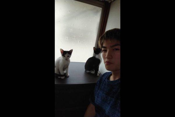 松田トレーナー猫を飼う